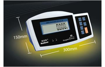 TZ Series Weighing Indicator Bench Scale