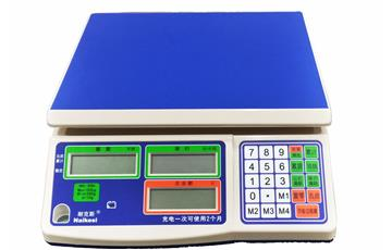 NS Series Price Computing E-scale